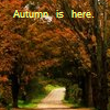 autumn avatar