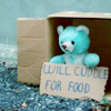 cute kawaii teddy will cuddle for food awww!
