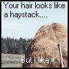 Twilight Haystack